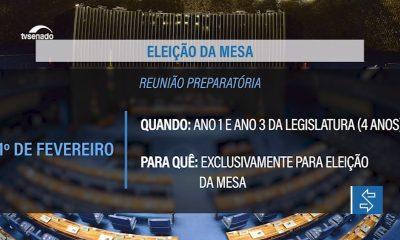 Vídeo: Senado vai eleger nova Mesa em fevereiro