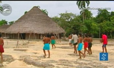 Vídeo: Visando proteger indígenas, senadores propõem revogar normas do governo