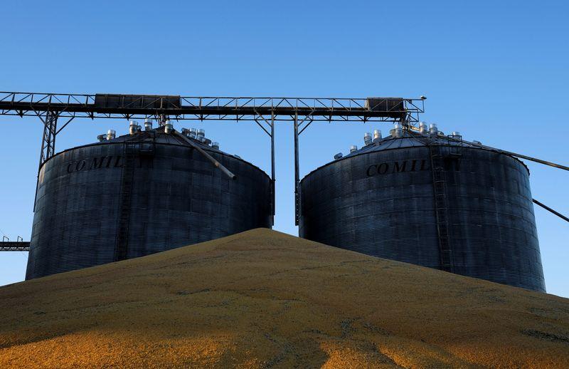 Apesar de alta do milho, Brasil mantém foco na 2ª safra e há riscos, diz AgRural