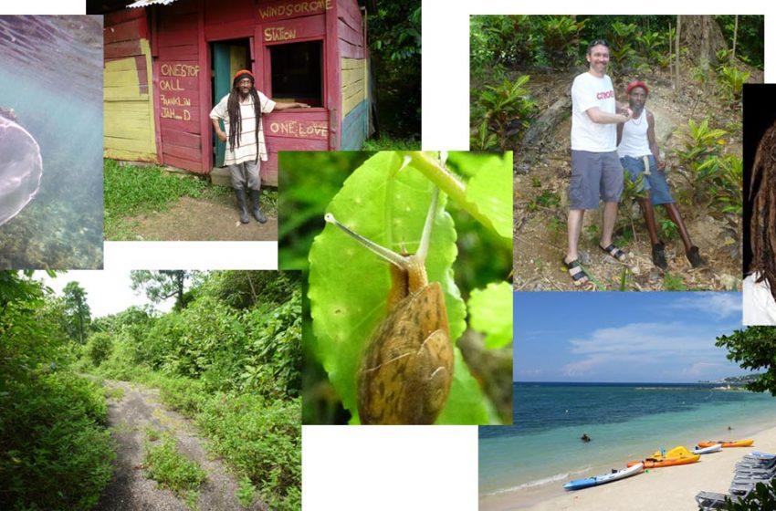 Aventuras em terras jamaicanas