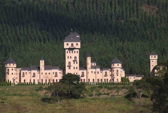 Castelo de ex-deputado federal em Minas Gerais vai a leilão;  saiba o lance mínimo